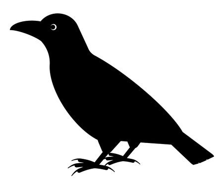 Crow Stok Fotoğraf