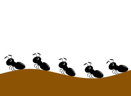 The matrix of the ant.