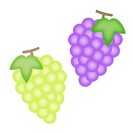 Grape and Muscat