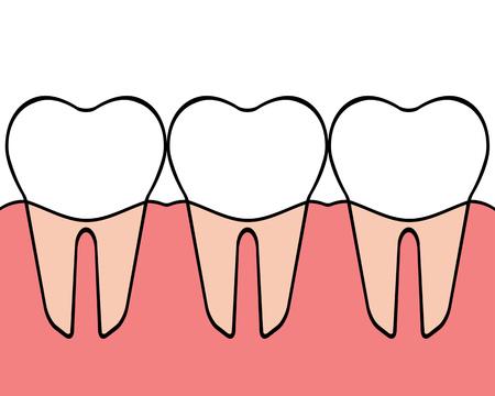 Teeth Banco de Imagens