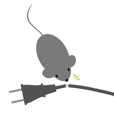 The mouse which cuts a cord Banco de Imagens - 121943634