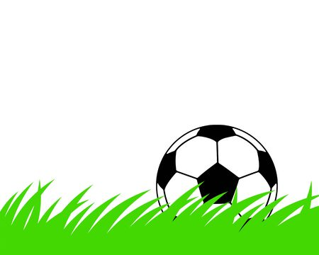 Soccer ball in grassland.