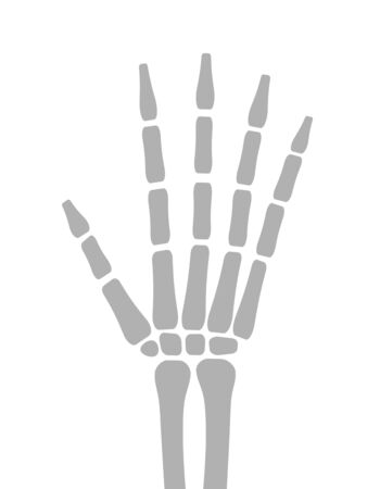 Bone of a hand Stock fotó - 131636879