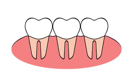 The part of the alignment of teeth. Stock fotó