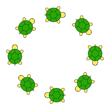 Frame of the turtle