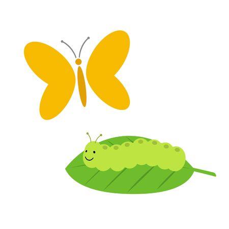 Butterflies and caterpillars.
