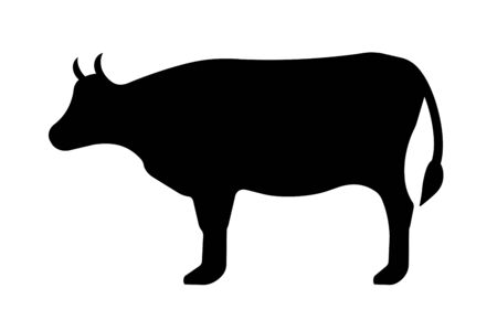 The Silhouette of the Cow. Stockfoto