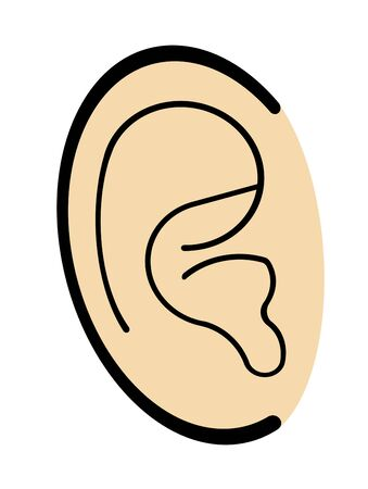 Shape of the ear