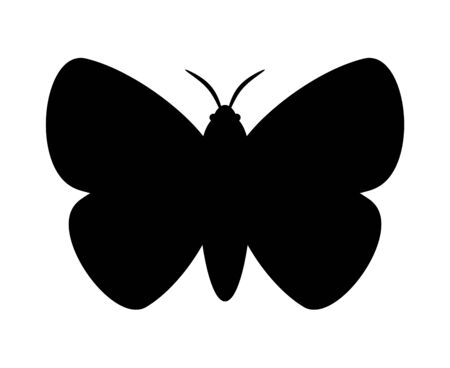 The silhouette of the moth
