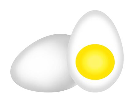 This is egg cross section