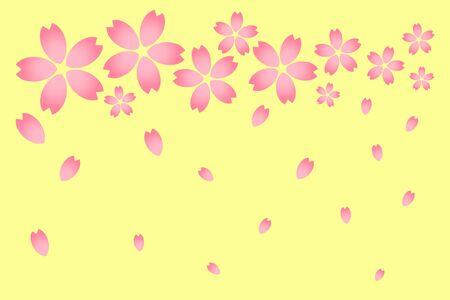 Cherry petals background