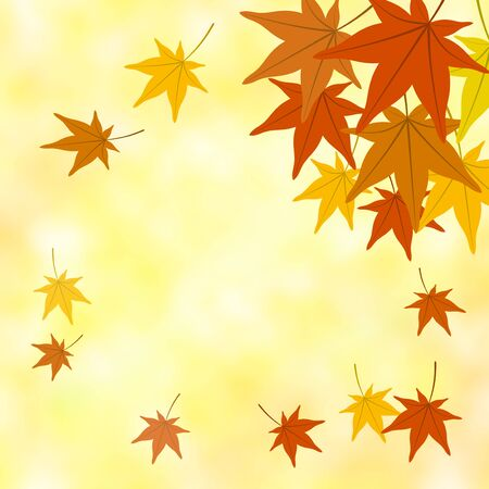 Scattering maple leaves