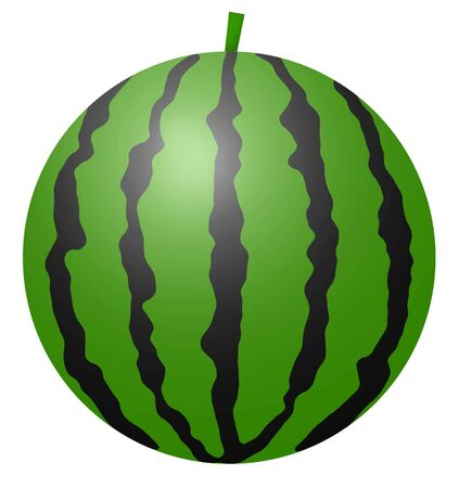 Watermelon with black and green pattern 写真素材