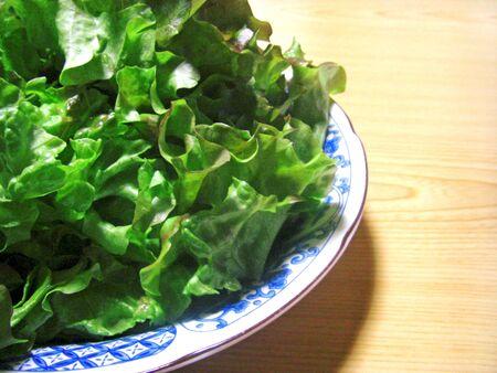 Sunny lettuce served in a plate Reklamní fotografie