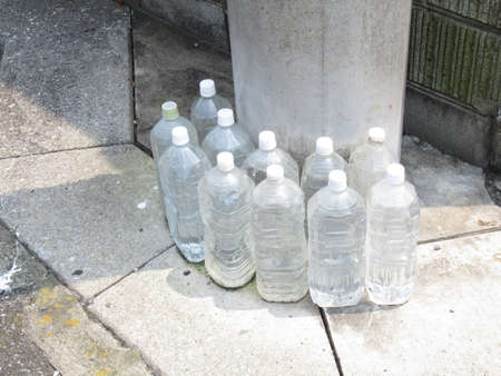 There are many plastic bottles