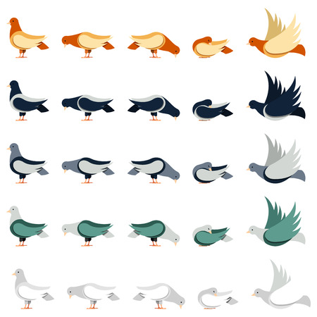 pecks: Set of pigeons in different poses in flat style.