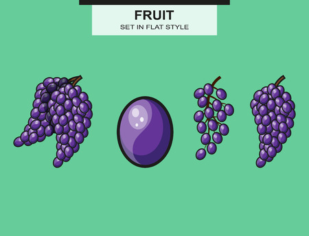 purple grapes: Set of grapes and grape bunches Illustration