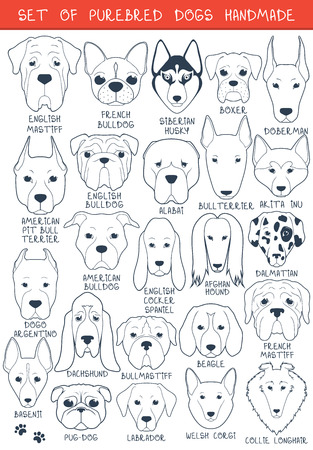 Chien: Ensemble de 24 chiens de différentes races Illustration