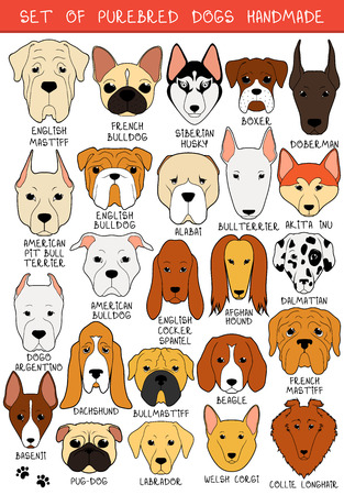 white dog: Set of 24 colored dogs different breeds