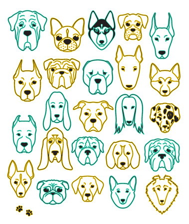Set of 24 different breeds dogs