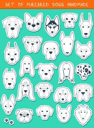 perro boxer: Conjunto de 24 pegatinas diferentes razas de perros Vectores