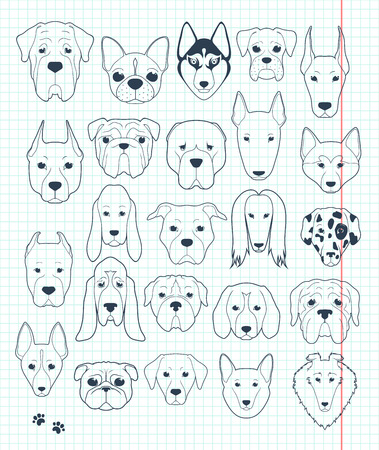 Set sketches of 24 dogs different breeds