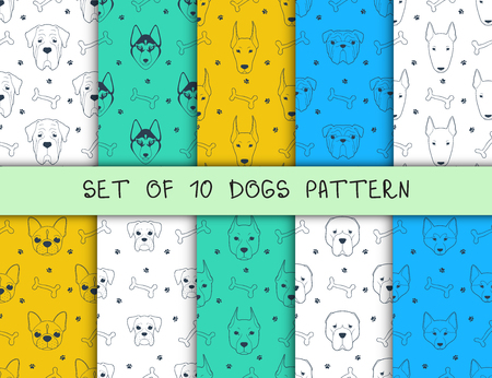 Set of 10 seamless patterns with different breeds of dogs. Bulldog and the Huskies. Pit bull and boxer. Terrier and Pug