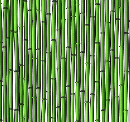 green bamboo: Background with a bamboo. Bamboo branches. A bamboo for design. Bamboo stalks Illustration