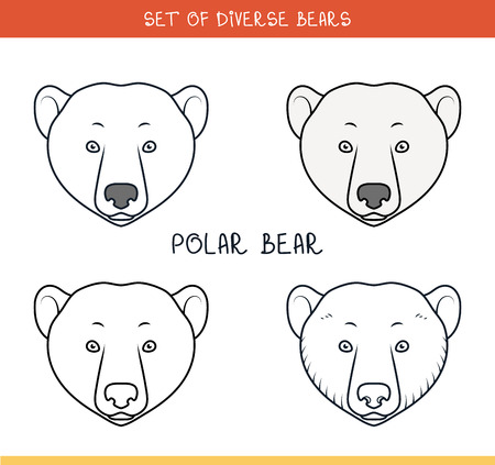 advertizing: Polar bear. Set of isolated heads of bear in color, lines. Heads for design. Templates of heads. Hipster style. Animation bear. Elements for labels and advertizing production. Print for the press Illustration
