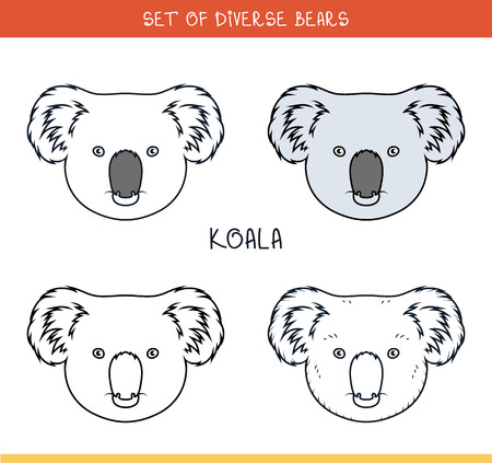 advertizing: Koala bear. Set of isolated heads of bear in color, lines. Heads for design. Templates of heads. Hipster style. Animation bear. Elements for labels and advertizing production. Print for the press Illustration