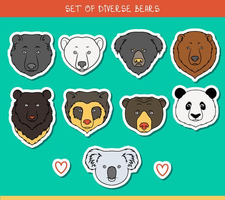 oso: Conjunto de 9 bozales pegatinas lleva hecha a mano en el estilo lineal. Rostros de osos. Osos de color. Razas de osos. Las especies de osos. Oso negro americano. Tenga set. Oso de anteojos. Oso asiático. Panda, koala
