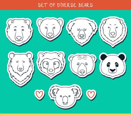 oso panda: Conjunto de 9 bozales pegatinas lleva hecha a mano en el estilo lineal. Rostros de osos. Razas de osos. Las especies de osos. Oso negro americano. Tenga set. Oso de anteojos. Oso asiático. Panda, koala