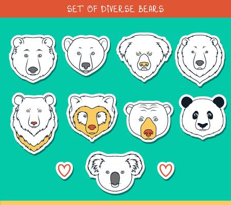 oso: Conjunto de 9 bozales pegatinas lleva hecha a mano en el estilo lineal. Rostros de osos. Osos de color. Razas de osos. Las especies de osos. Oso negro americano. Tenga set. Oso de anteojos. Oso asi�tico. Panda, koala