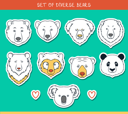 asiatic: Set of 9 muzzles stickers bears handmade in linear style. Faces of bears. Color bears. Breeds of bears. Species of bears. American black bear. Bear set. Spectacled Bear. Asiatic bear. Panda, koala