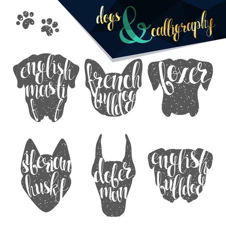 bulldog: Set razas nombres de perro en el diseño de la caligrafía hecha a mano. Siluetas razas de perros. Elite etiquetas de diseño de primera calidad. Caligrafía crear retro y diseño del vintage infografías, carteles, folletos, tarjetas postales.