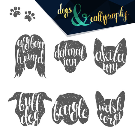 breeds: Set names dog breeds in calligraphy handmade design. Silhouettes dog breeds. Elite premium design labels. Calligraphy create retro and vintage design infographics, posters, brochures, postcards.
