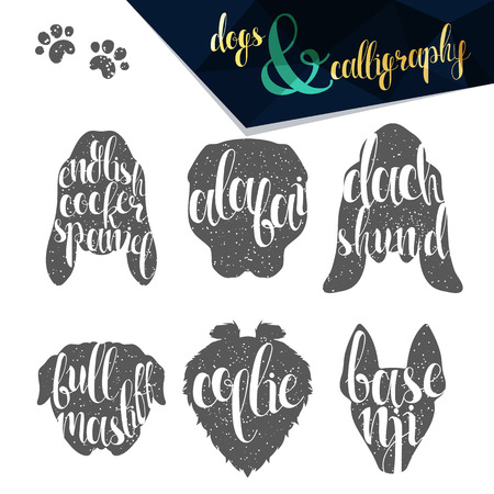 breeds: Set names dog breeds in calligraphy handmade design. Silhouettes dog breeds. Elite premium design labels. Calligraphy create retro and vintage design infographics, posters, brochures, postcards.