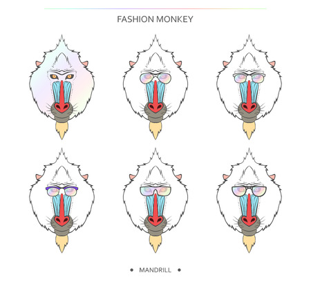 mandrill: Isolated holography set of monkey muzzles in a linear style and in different glasses. Symbol of 2016 in the Chinese horoscope . Mandrill for design . Monkeys in hipster retro style. monkey head Illustration