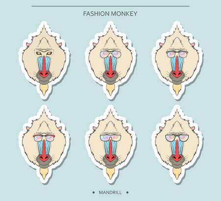 mandrill: Isolated stickers set of monkey muzzles in a linear style and in different glasses. Symbol of 2016 in the Chinese horoscope . Mandrill for design . Monkeys in hipster retro style. monkey head Illustration