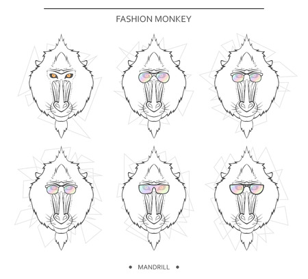 mandrill: Isolated set of monkey muzzles in a linear style and in different glasses. Symbol of 2016 in the Chinese horoscope . Mandrill for design . Monkeys in hipster retro style. monkey head