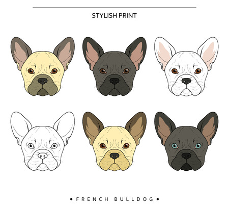 brown and black dog face: Set goals sketch french bulldog different color . Cute dog for realistic design. Dog Doodle prints for printer on clothes, T-shirts , textiles. Sketch of a French bulldog handmade design