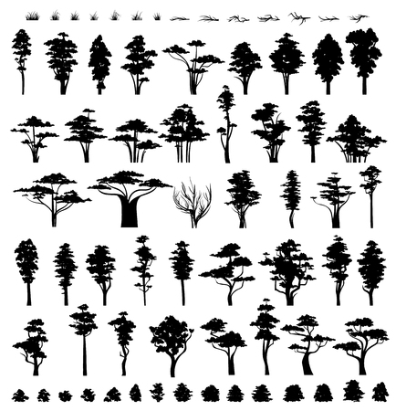 vegetation: Trees silhouettes isolated on white background.  Nature trees. Grass and bushes . Collection vegetation trees bushes and grass .
