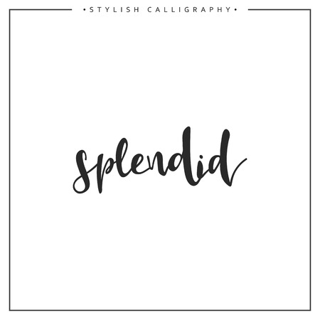 splendid: Calligraphy isolated on white background inscription phrase, splendid.