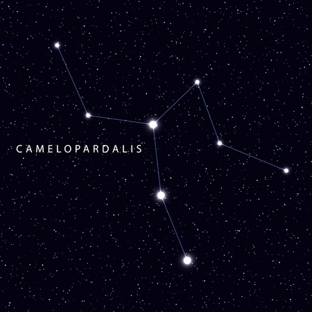 camelopardalis: Sky Map with the name of the stars and constellations. Astronomical symbol constellation Camelopardalis Illustration