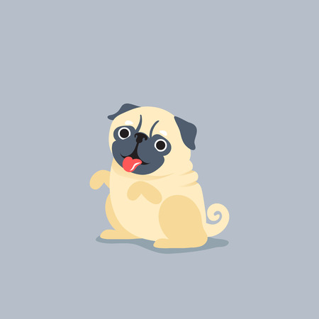 pug dog: Cartoon character pug dog poses. Cute Pet dog in the flat style.