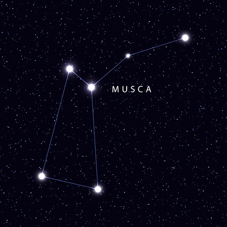 musca: Sky Map with the name of the stars and constellations. Astronomical symbol constellation Musca