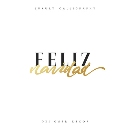 Merry Christmas. Spanish inscription. Feliz Navidad. Beautiful text calligraphy handmade. Xmas holidays poster and greeting card. Illusztráció