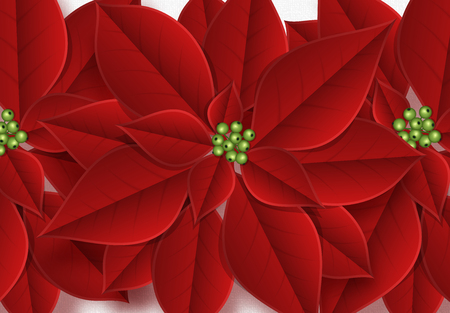 Background decorated with beautiful red buds poinsettia flowers.