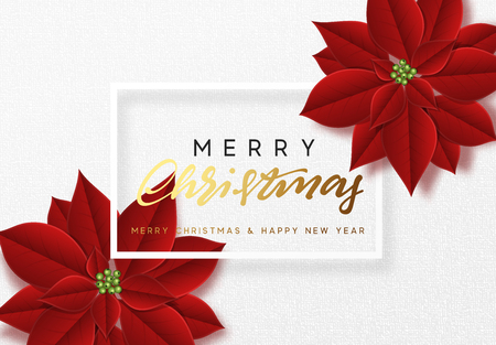 Merry Christmas, background decorated with beautiful red buds poinsettia flowers. Foto de archivo - 109876900
