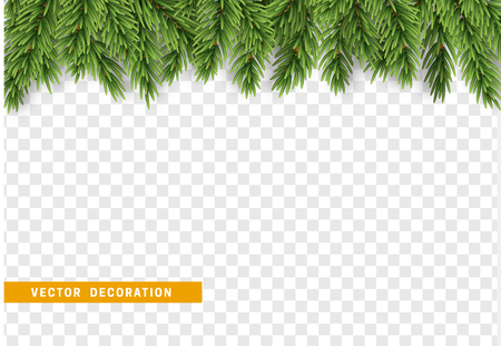 Christmas border with fir branches. Isolated on transparent background. Xmas vector illustration